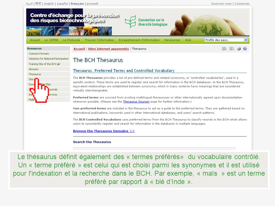 Le thésaurus définit également des « termes préférés» du vocabulaire contrôlé.