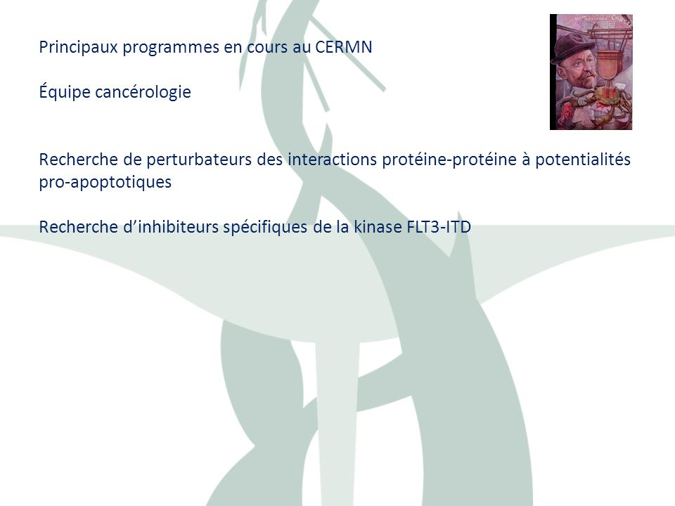 Principaux programmes en cours au CERMN
