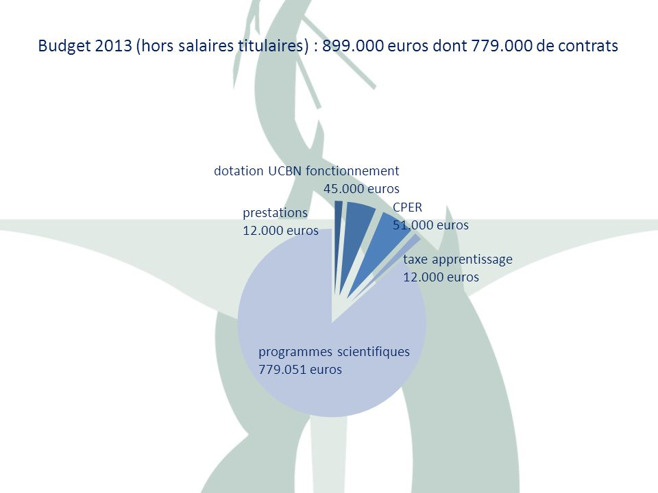 Budget 2013 (hors salaires titulaires) : 899. 000 euros dont 779