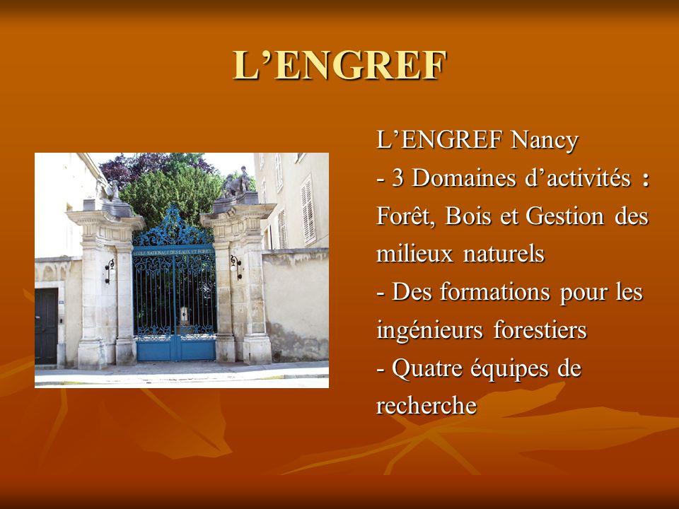 L'ENGREF L'ENGREF Nancy - 3 Domaines d'activités :