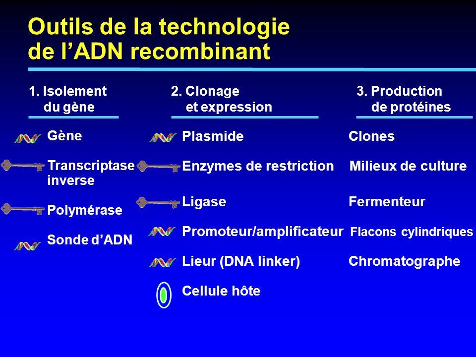 Outils de la technologie de l'ADN recombinant
