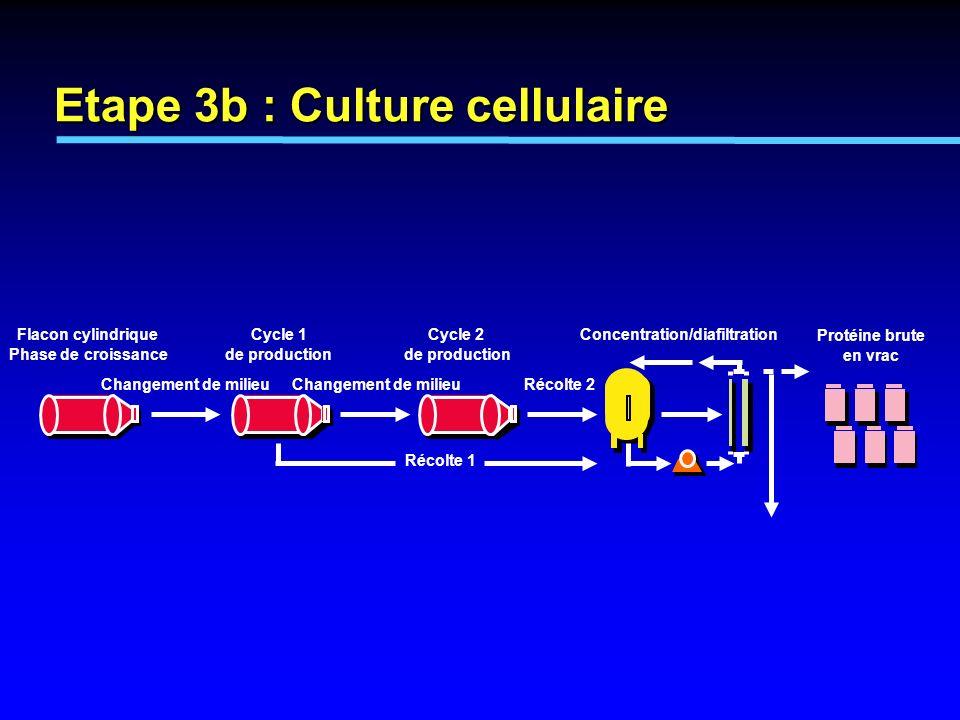 Etape 3b : Culture cellulaire