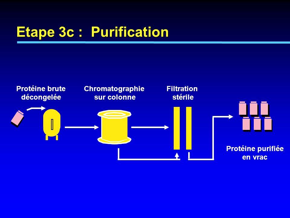Etape 3c : Purification Protéine brute décongelée Chromatographie