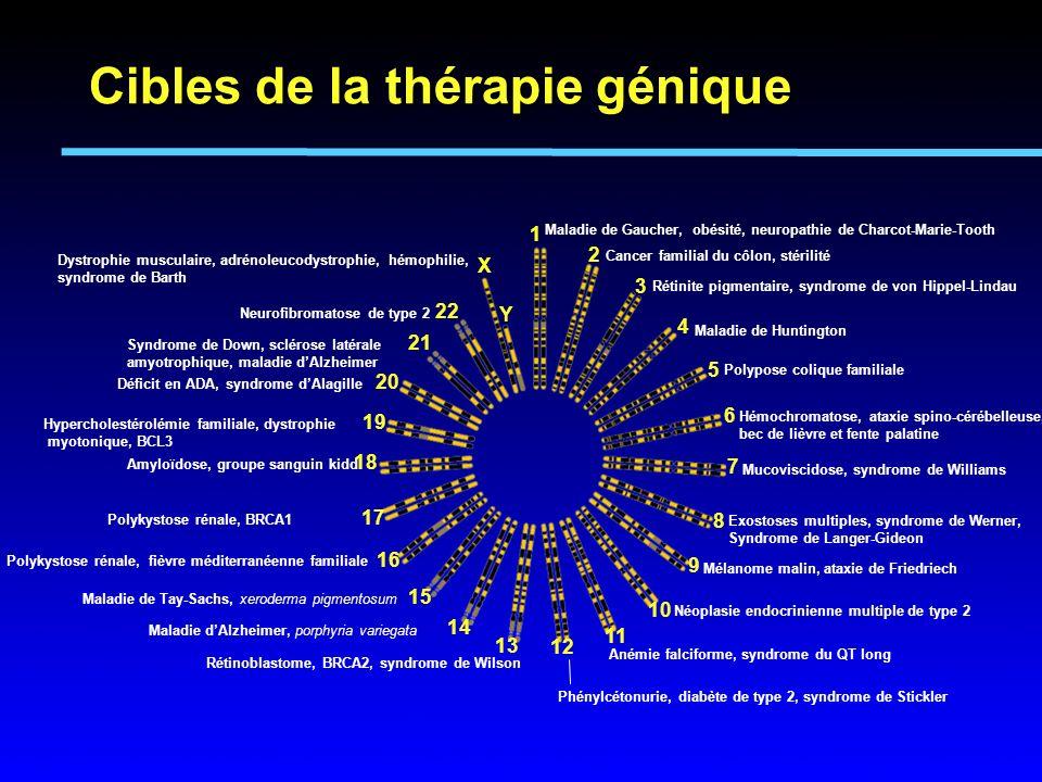 Cibles de la thérapie génique