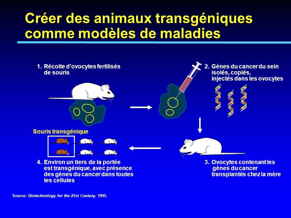 Créer des animaux transgéniques comme modèles de maladies