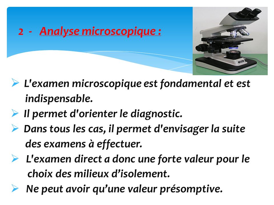 2 - Analyse microscopique :