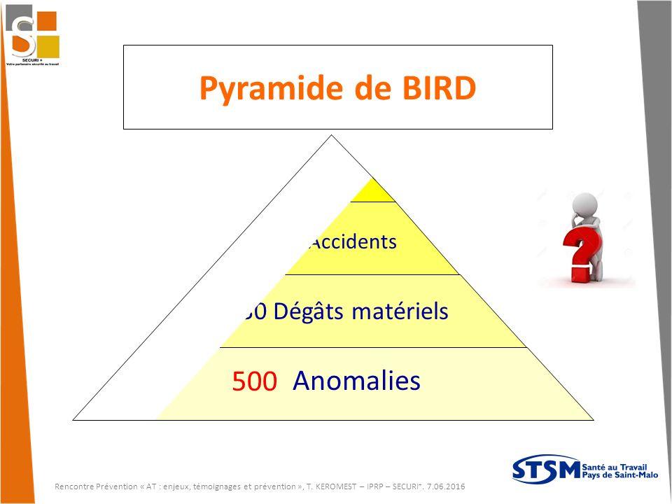 Pyramide de BIRD 500 600 Anomalies 30 Dégâts matériels 1 grave