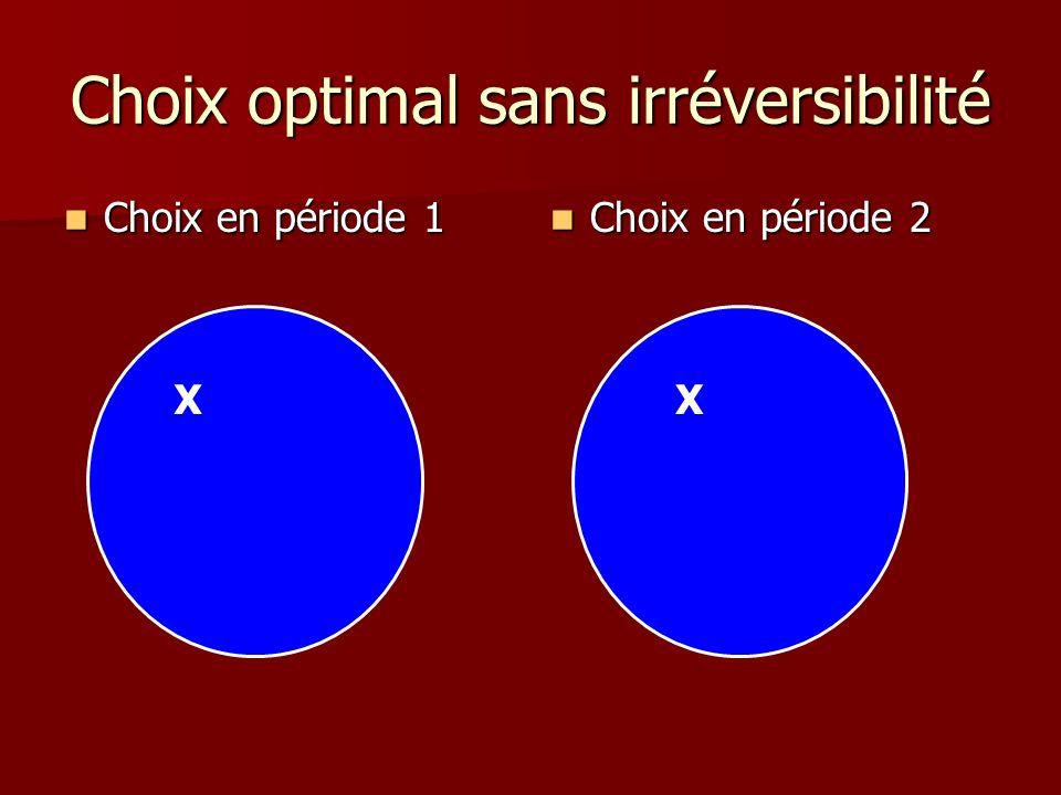 Choix optimal sans irréversibilité