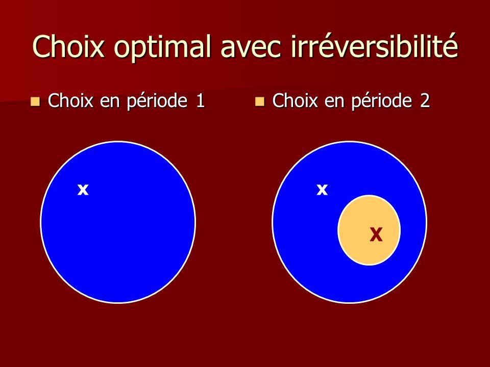 Choix optimal avec irréversibilité