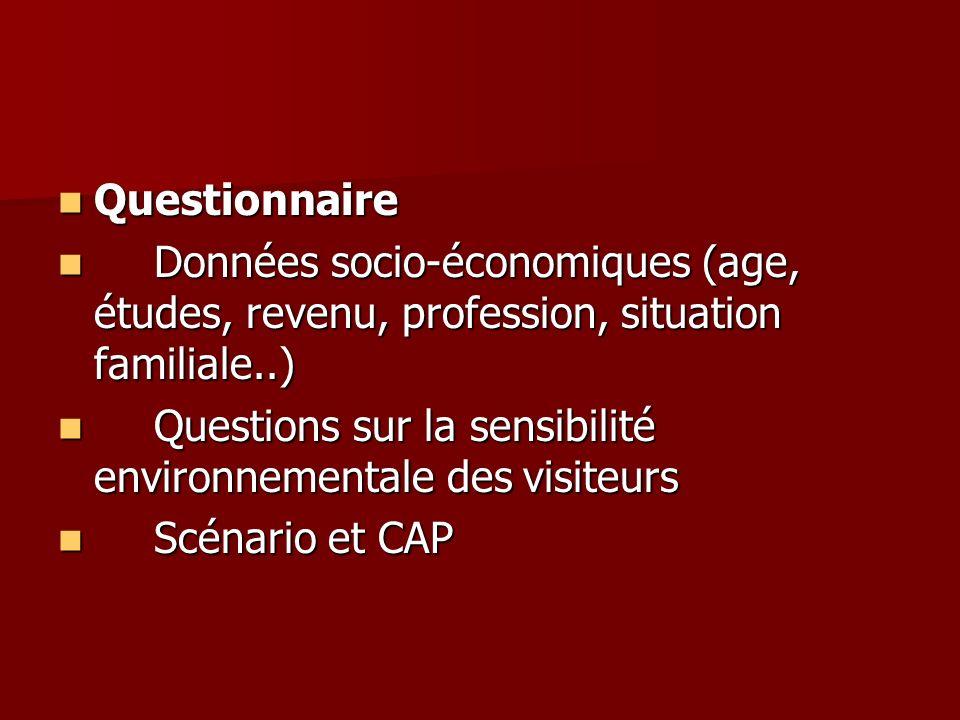 Questionnaire Données socio-économiques (age, études, revenu, profession, situation familiale..)