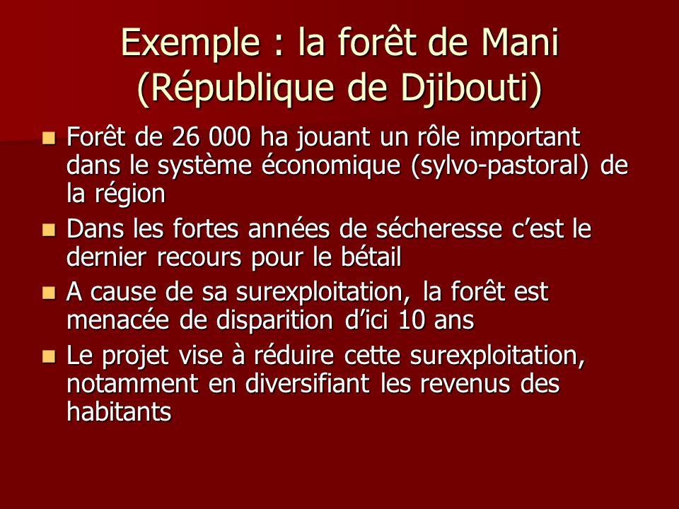 Exemple : la forêt de Mani (République de Djibouti)