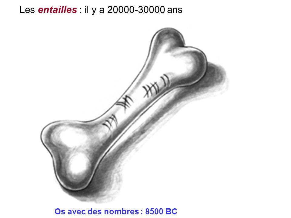 Les entailles : il y a 20000-30000 ans