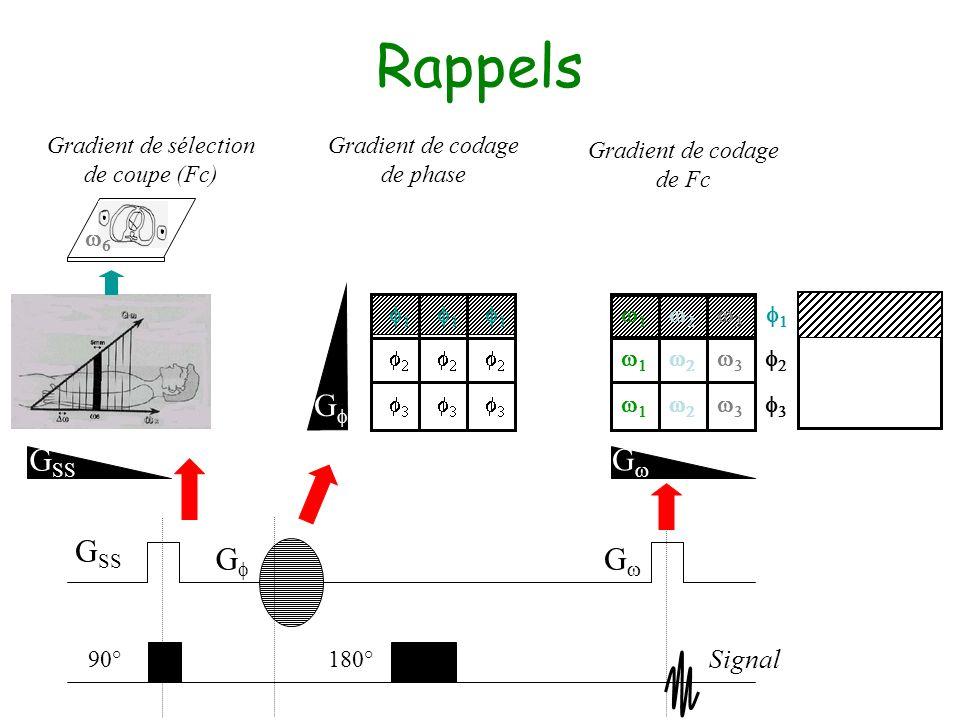 Rappels Gf GSS Gw GSS Gf Gw Signal Gradient de sélection de coupe (Fc)