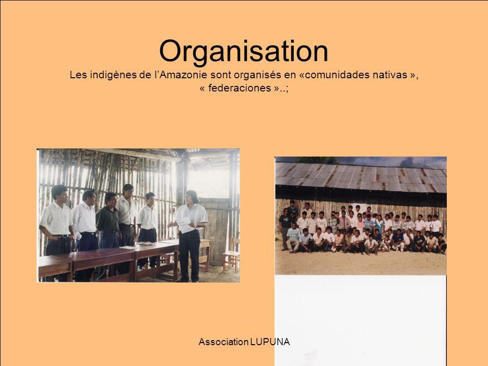 Organisation Les indigènes de l'Amazonie sont organisés en «comunidades nativas », « federaciones »..;