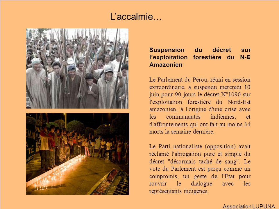L'accalmie…Suspension du décret sur l'exploitation forestière du N-E Amazonien.