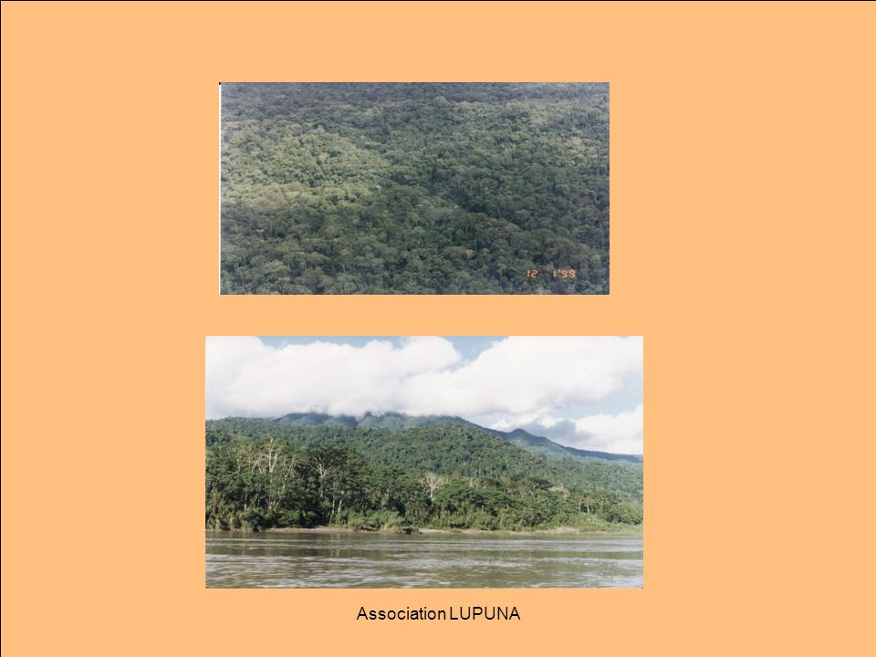 Association LUPUNA