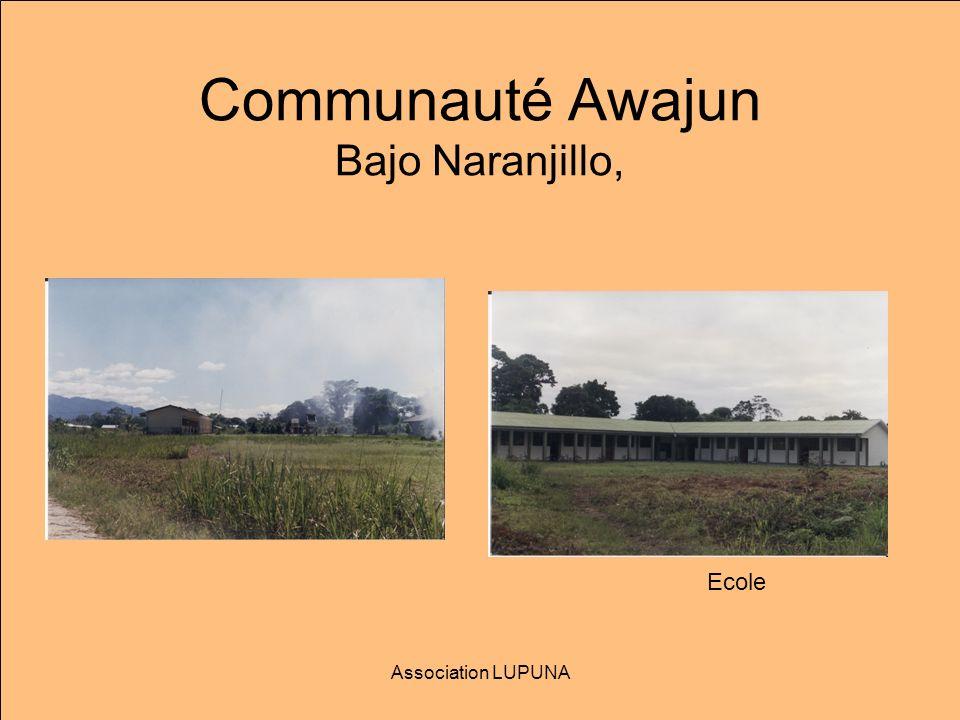 Communauté Awajun Bajo Naranjillo,