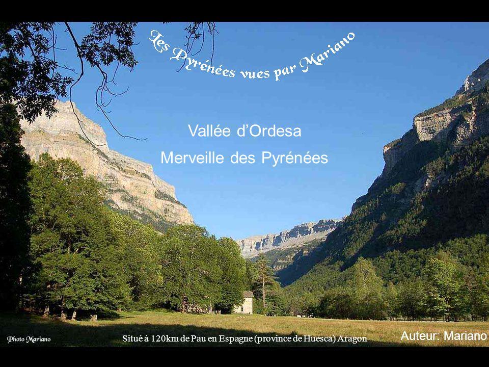 Merveille des Pyrénées
