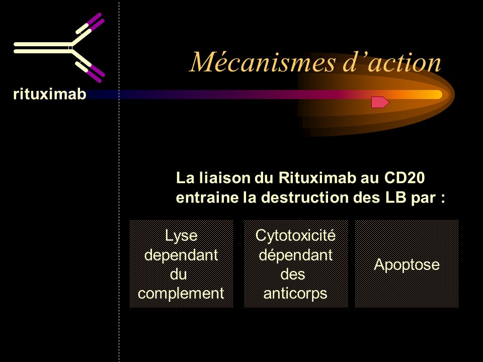 Mécanismes d'action rituximab La liaison du Rituximab au CD20