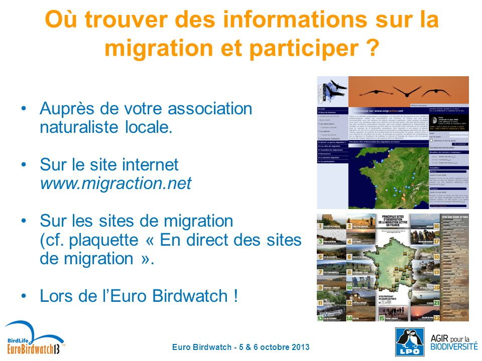 Où trouver des informations sur la migration et participer