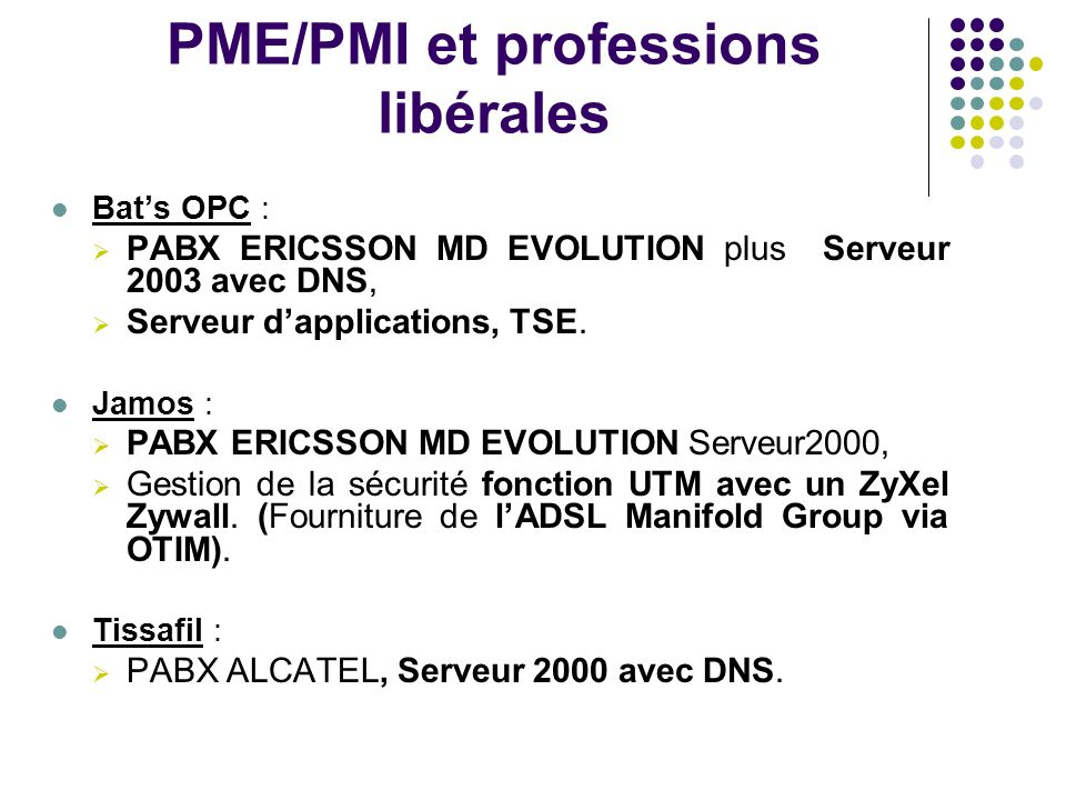 PME/PMI et professions libérales