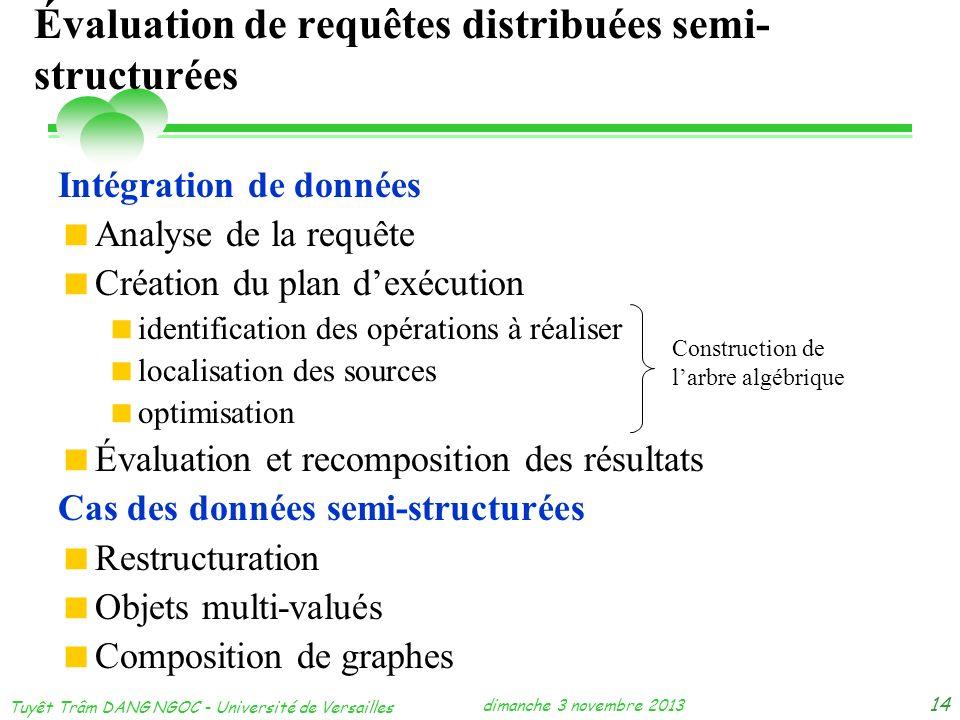 Évaluation de requêtes distribuées semi-structurées