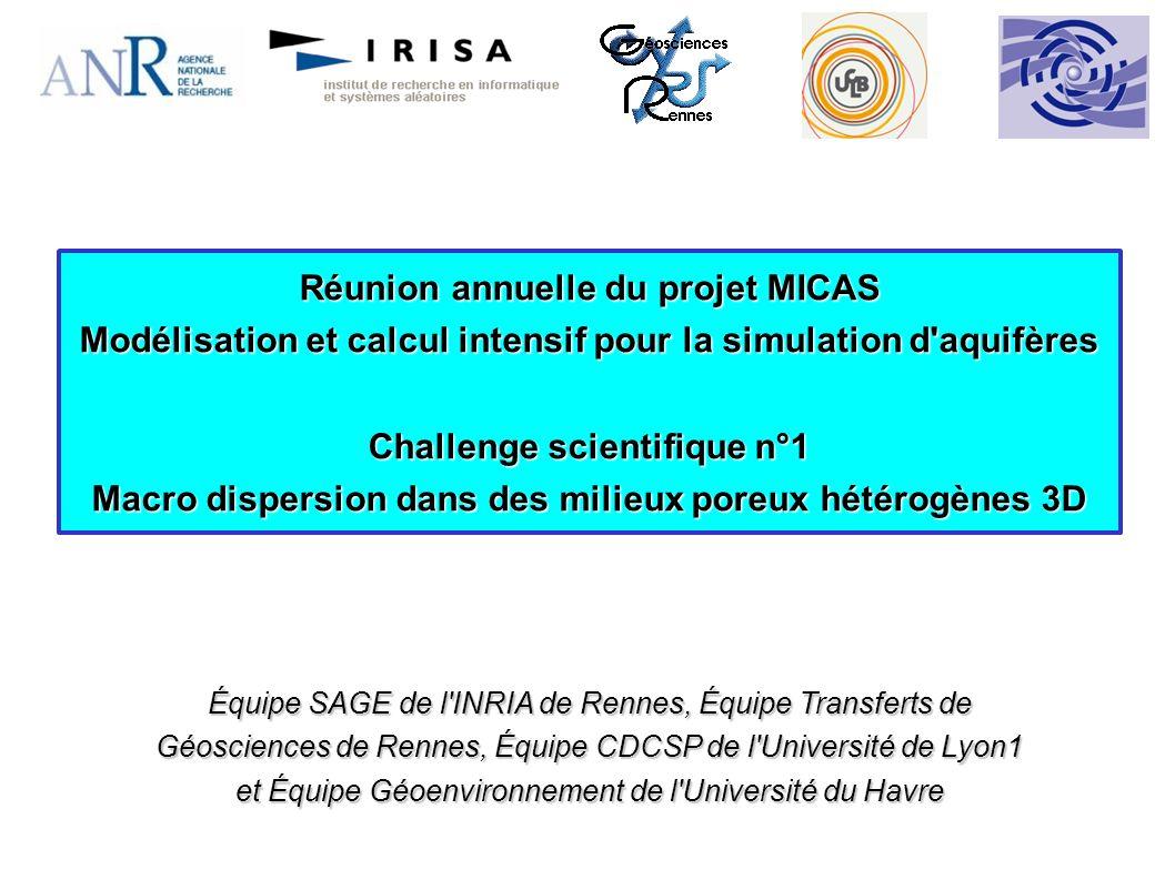 Réunion annuelle du projet MICAS