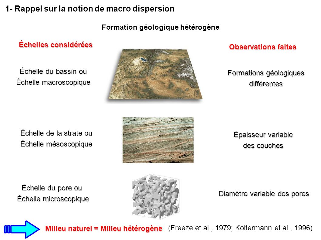Milieu naturel = Milieu hétérogène