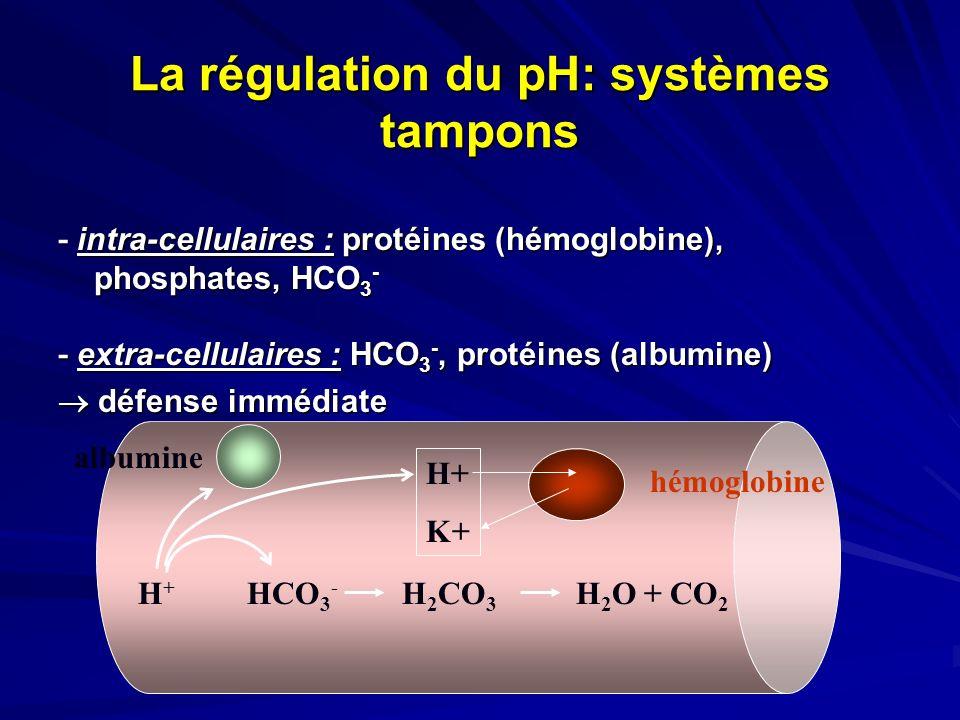 La régulation du pH: systèmes tampons