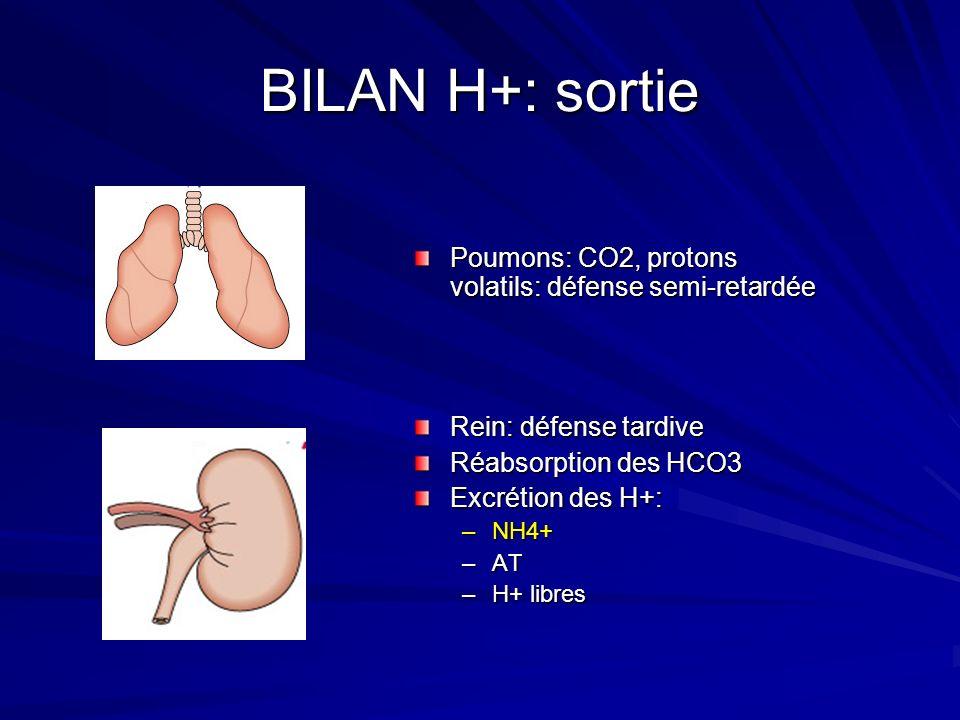 BILAN H+: sortie Poumons: CO2, protons volatils: défense semi-retardée
