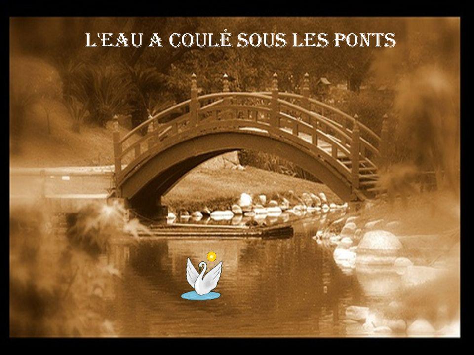 L eau a coulé sous les ponts