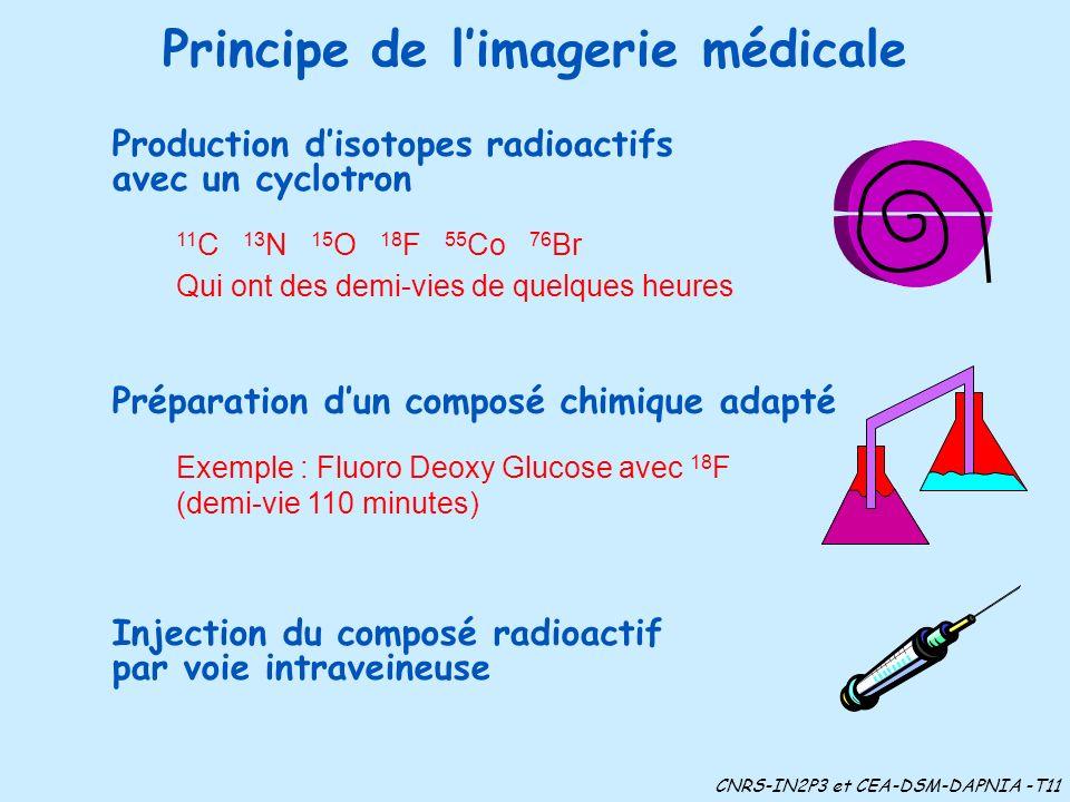 Principe de l'imagerie médicale