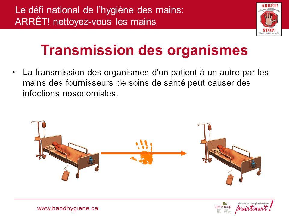 Transmission des organismes