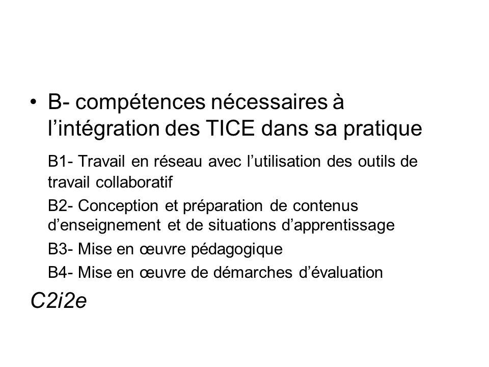 B- compétences nécessaires à l'intégration des TICE dans sa pratique