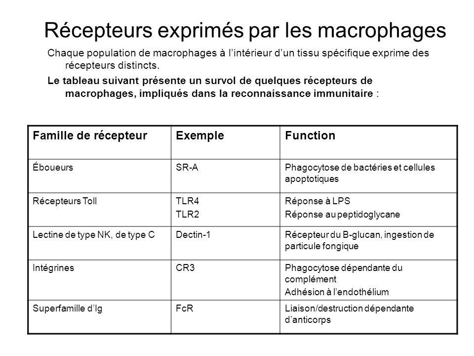 Récepteurs exprimés par les macrophages