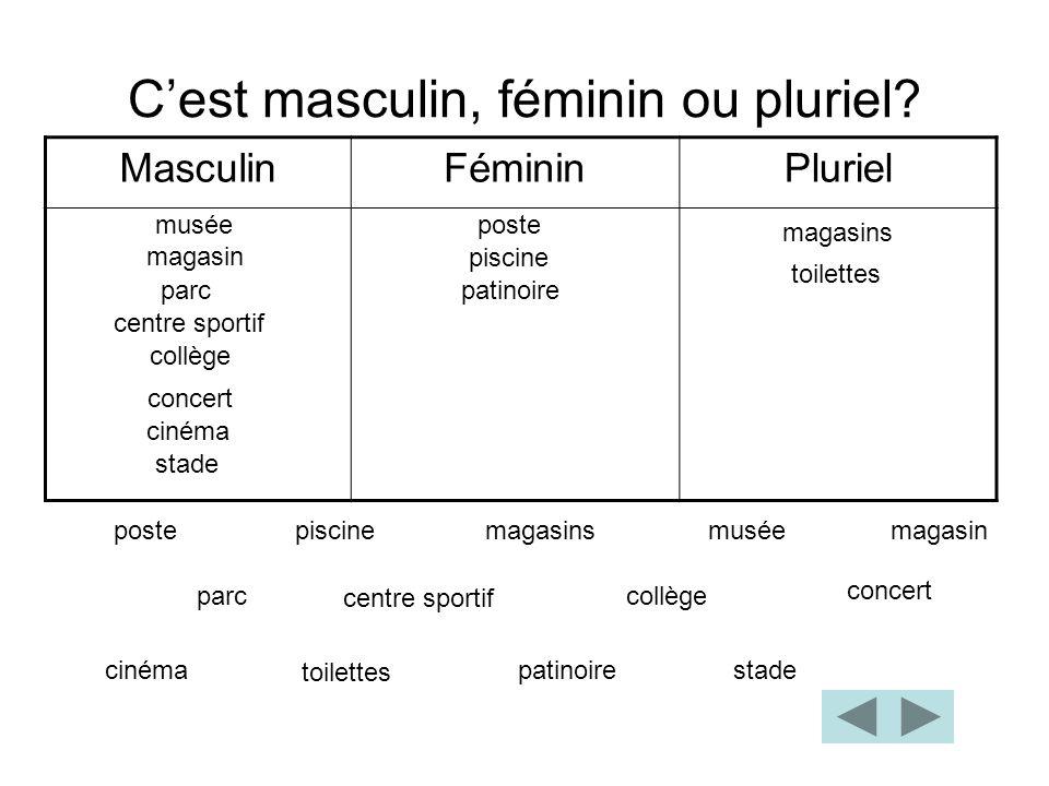 C'est masculin, féminin ou pluriel