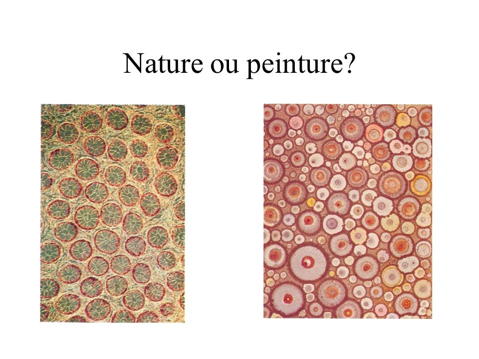 Nature ou peinture