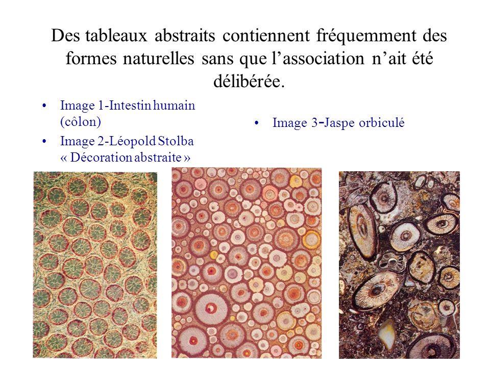 Des tableaux abstraits contiennent fréquemment des formes naturelles sans que l'association n'ait été délibérée.