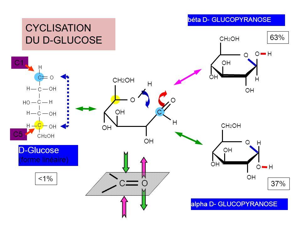 CYCLISATION DU D-GLUCOSE D-Glucose C O 63% C1 C5 (forme linéaire)