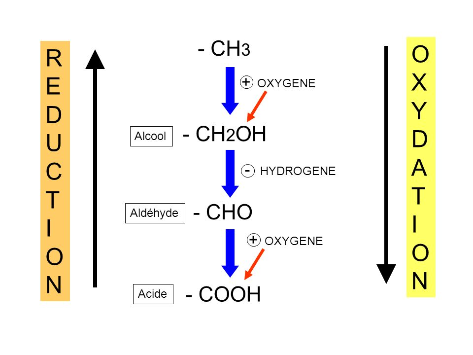 OXYDATION REDUCTION - CH3 - CH2OH - CHO - COOH + OXYGENE - HYDROGENE
