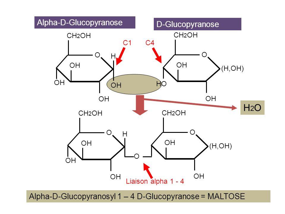 H2O Alpha-D-Glucopyranose D-Glucopyranose