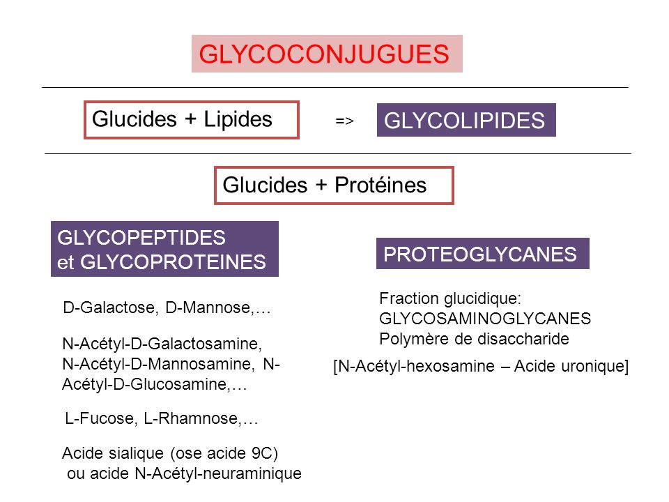 GLYCOCONJUGUES Glucides + Lipides GLYCOLIPIDES Glucides + Protéines