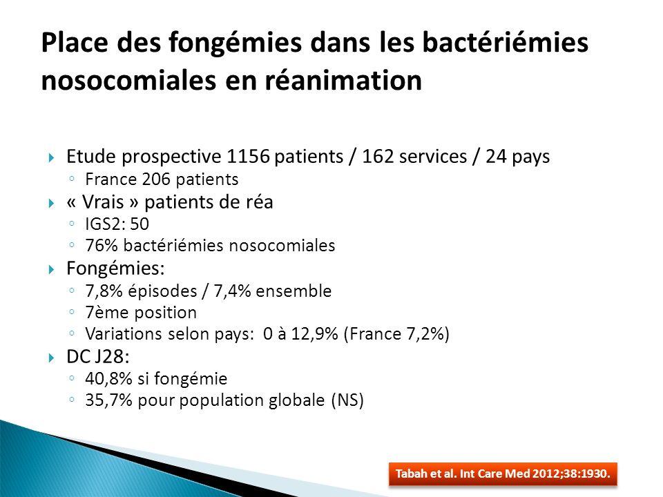 Place des fongémies dans les bactériémies nosocomiales en réanimation