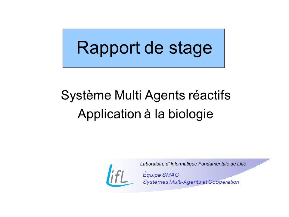 Système Multi Agents réactifs Application à la biologie