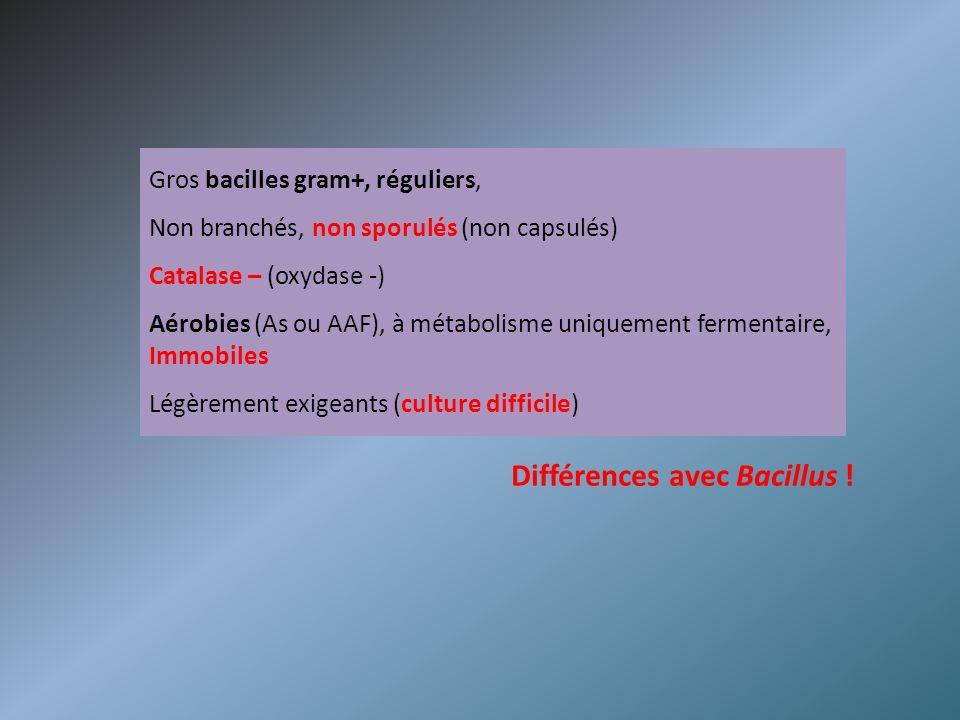 Différences avec Bacillus !