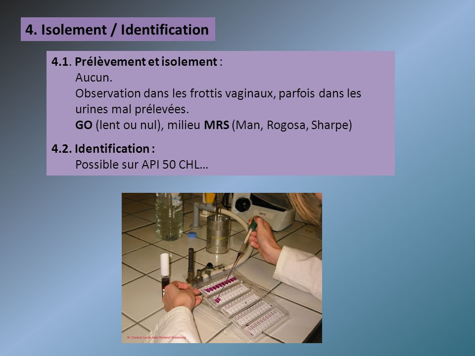 4. Isolement / Identification