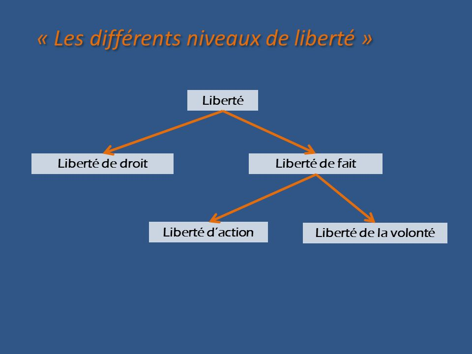 « Les différents niveaux de liberté »