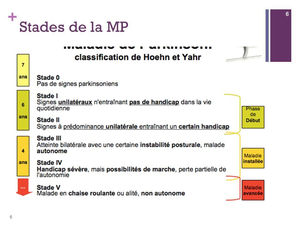 Stades de la MP 6