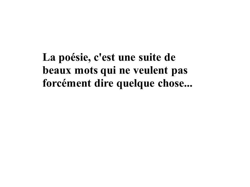 La poésie, c est une suite de beaux mots qui ne veulent pas forcément dire quelque chose...