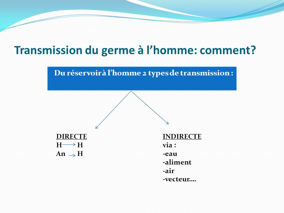 Transmission du germe à l'homme: comment